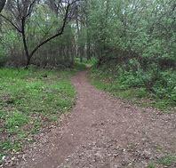 Bidwell Park4