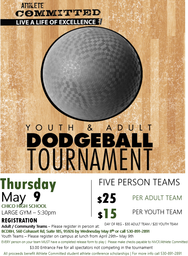 Dodgeball Flyer 2019